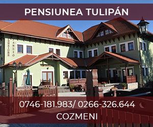 Pensiune-Restaurant Tulipan
