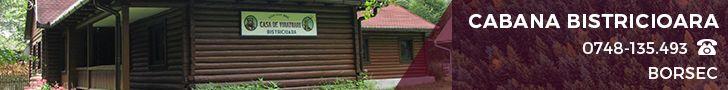Cabana Bistricioara