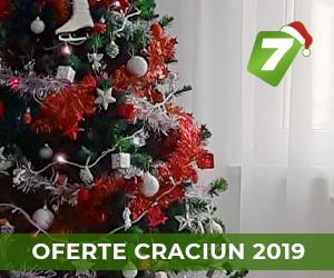 Oferta Craciun 2019
