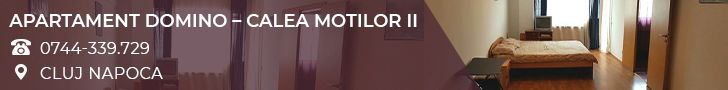 Apartament Domino - Calea Moltilor II