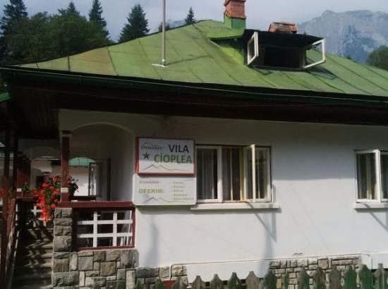 Vila Cioplea
