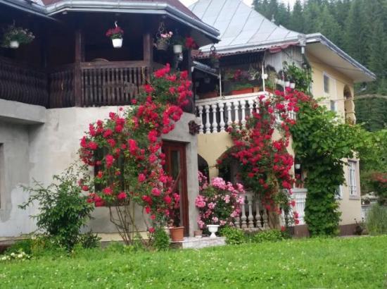 Pensiunea Casa Lucian