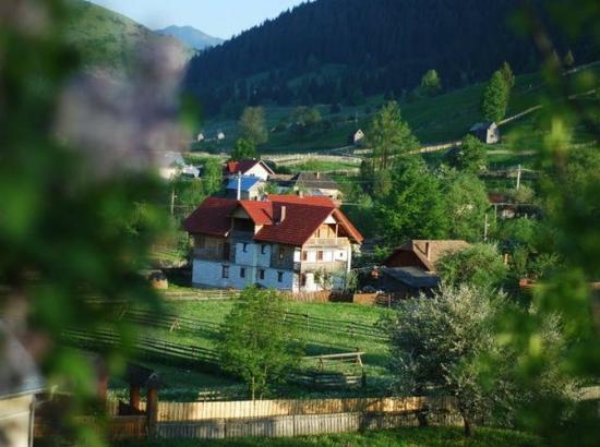 Pensiunea Casa Severin