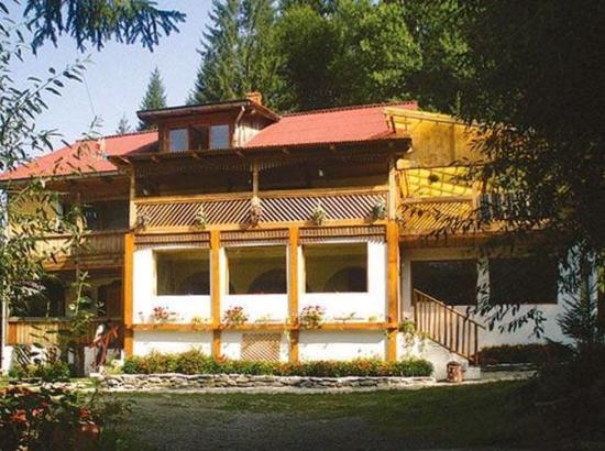 Casa Vancea