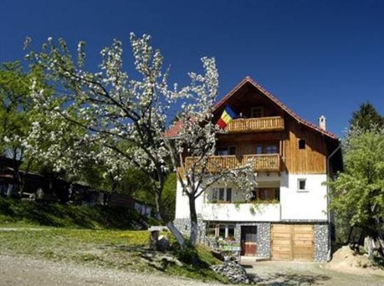 Casa Padurea de Pini
