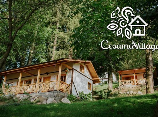 Casa de vacanta Cosama Village
