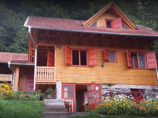 Vila Casa Teodora
