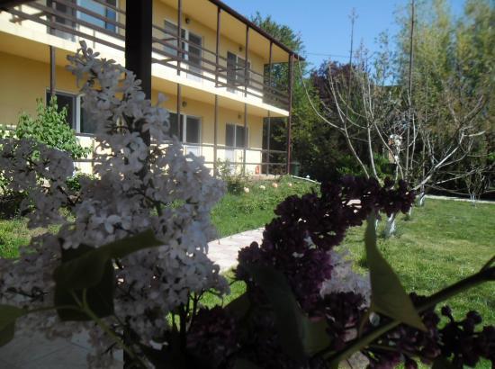 Vila Catrini
