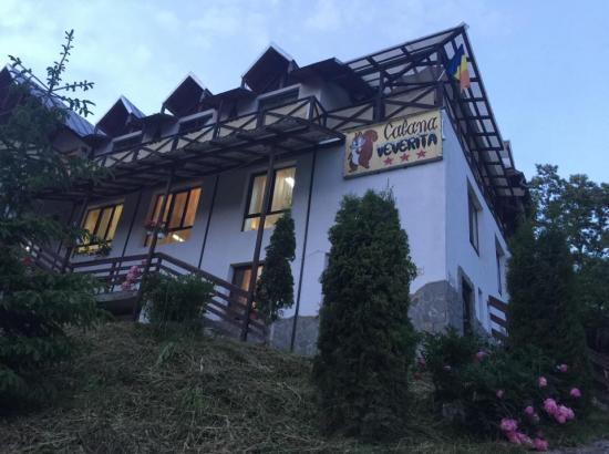 Cabana Veverita