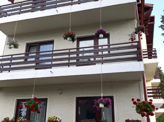 Hotel Vila Edelweiss