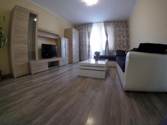 Apartament Central Radu