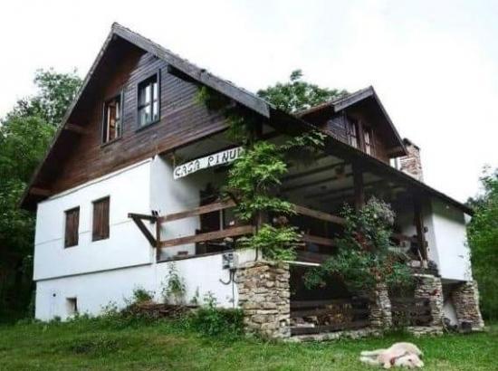 Casa Pinul