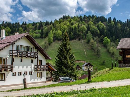 Vila de lemn