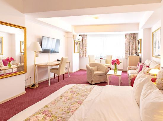Hotel Bucur Accommodation