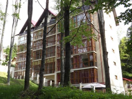 Apart Hotel Alpin Residence