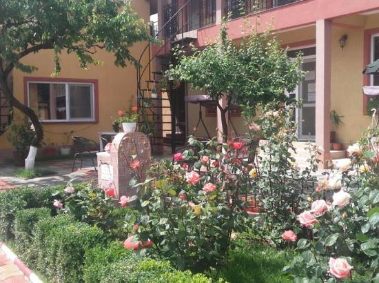 Camere de inchiriat Casa cu Flori